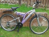 Mountain Bike - Barracuda