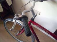Raleigh Adult Bicycle